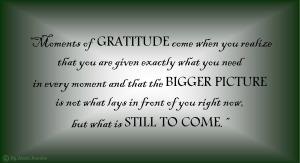 moments-of-gratitude-copyright